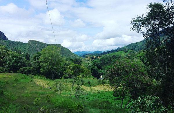 Colombia reis Vositivity
