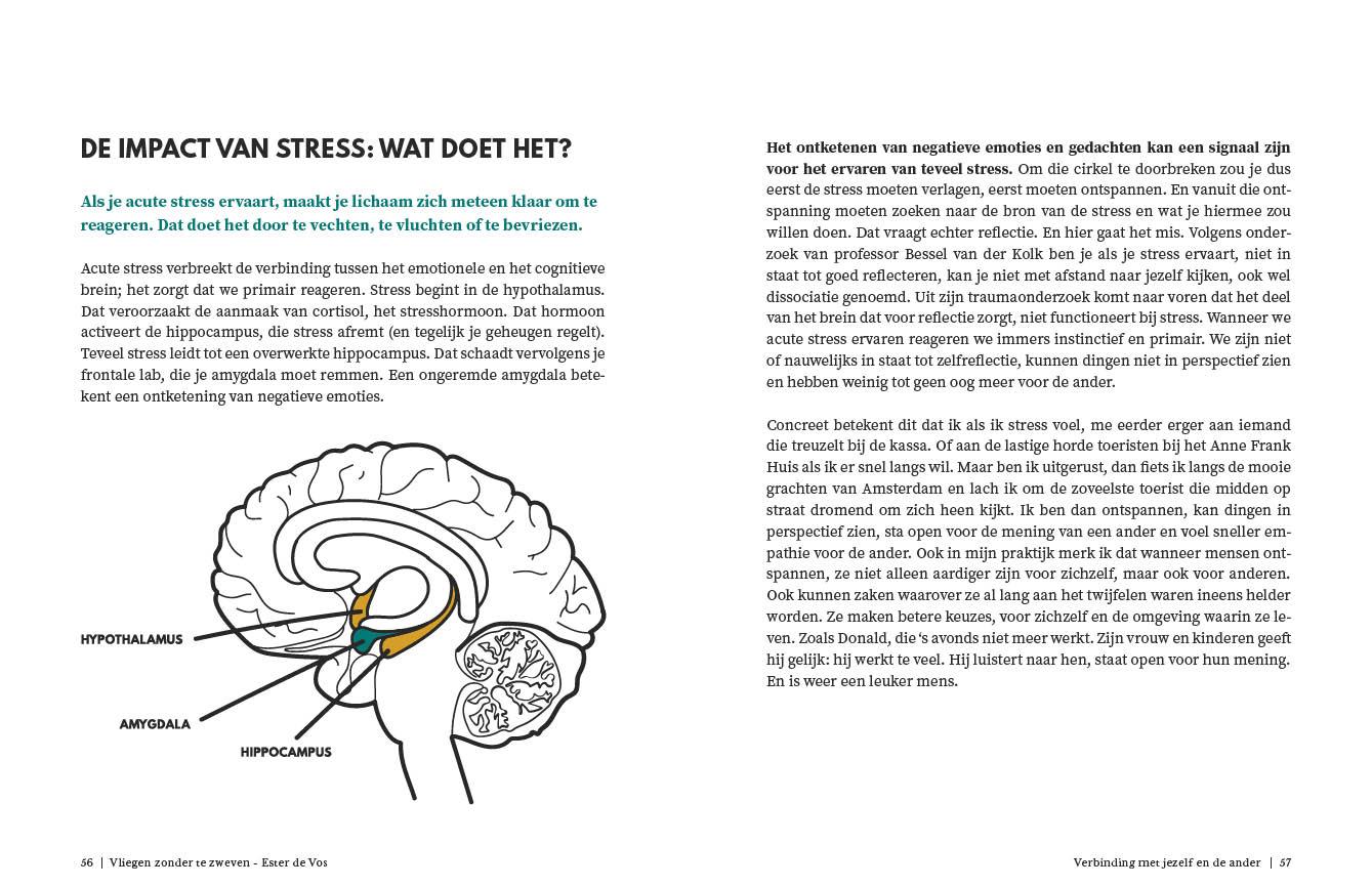 Impact van stress